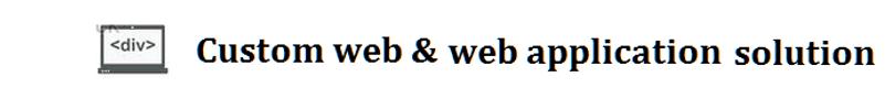 Custom_web_web_application_solution